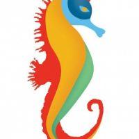 Σήμερα το βράδυ, λάτιν πάρτι και συναυλία με τους Άσσους του Σαλβαδόρ!
